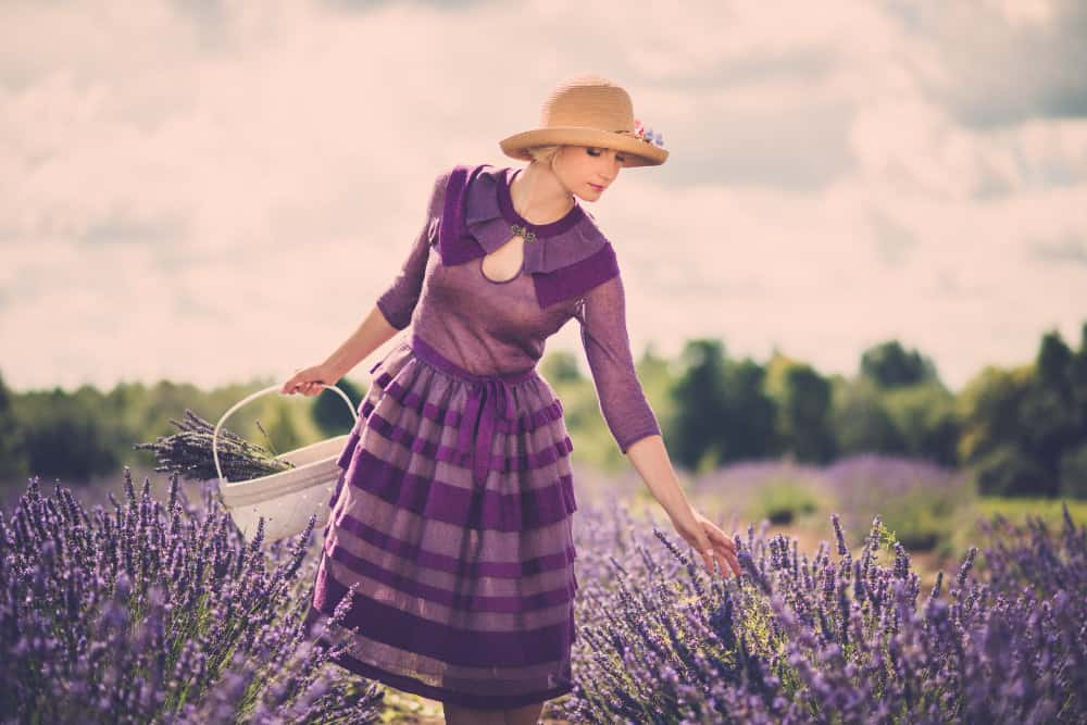 keep-calm-love-purple